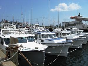Novia Scotia fishing boats